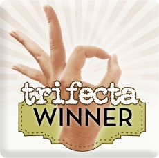 Trifecta Winner Icon - 300dpi