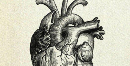 heart543